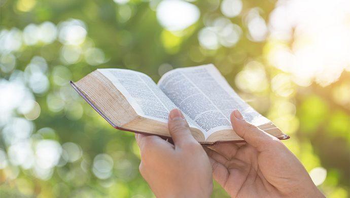 Lea la Biblia en 1 año – 116° día