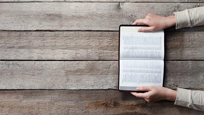 Lea la Biblia en 1 año – 143° día