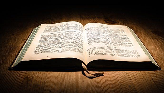 Lea la Biblia en 1 año – 142° día