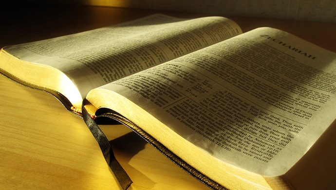 Lea la Biblia en 1 año – 162° día