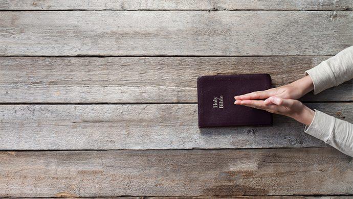 Lea la Biblia en 1 año – 183° día
