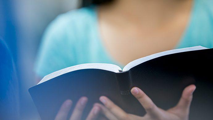 Lea la Biblia en 1 año – 153° día