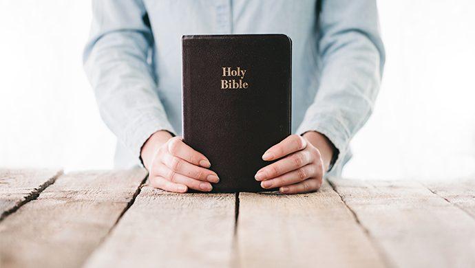Lea la Biblia en 1 año – 165° día