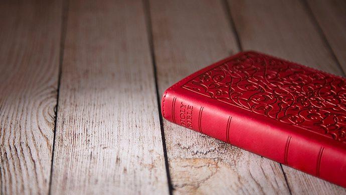 Lea la Biblia en 1 año – 209° día