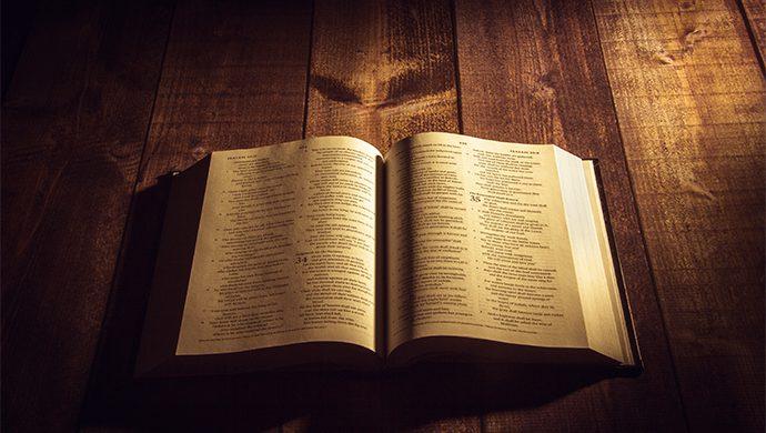 Lea la Biblia en 1 año – 228° día