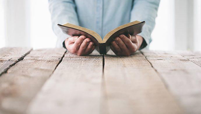 Lea la Biblia en 1 año – 218° día