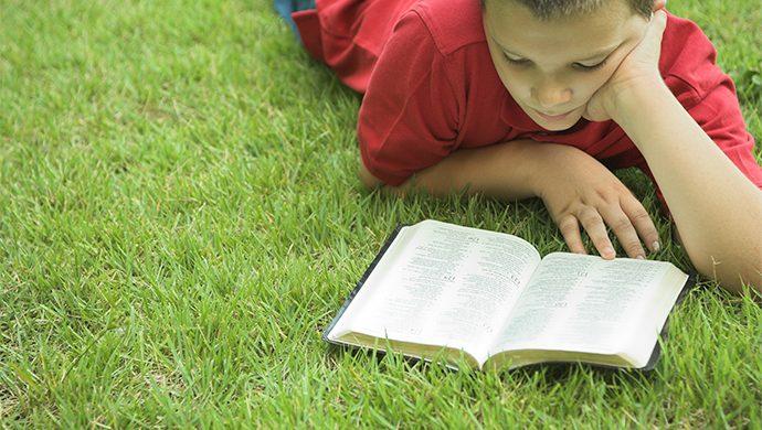Lea la Biblia en 1 año – 229° día