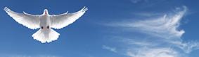 ¿Cuál es la importancia del Bautismo con el Espíritu Santo y cómo alcanzarlo?