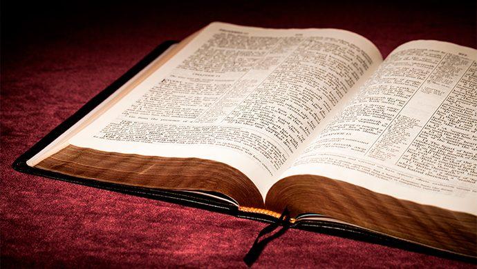 Lea la Biblia en 1 año – 262° día