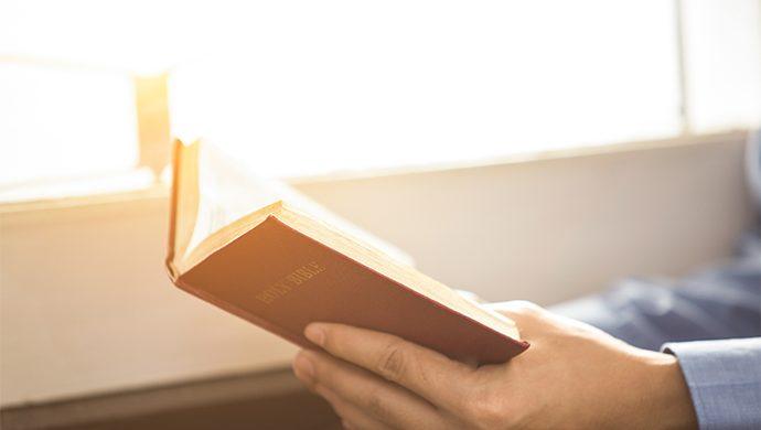 Lea la Biblia en 1 año – 267° día