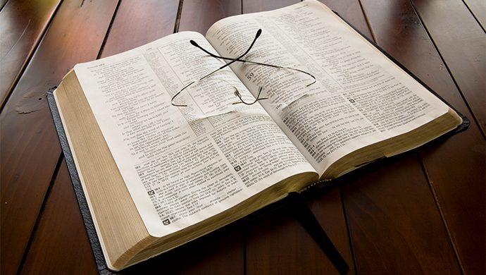Lea la Biblia en 1 año – 291° día
