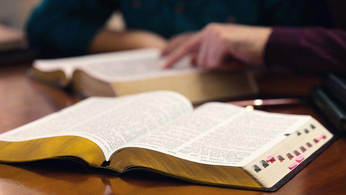 Lea la Biblia en 1 año – 292° día