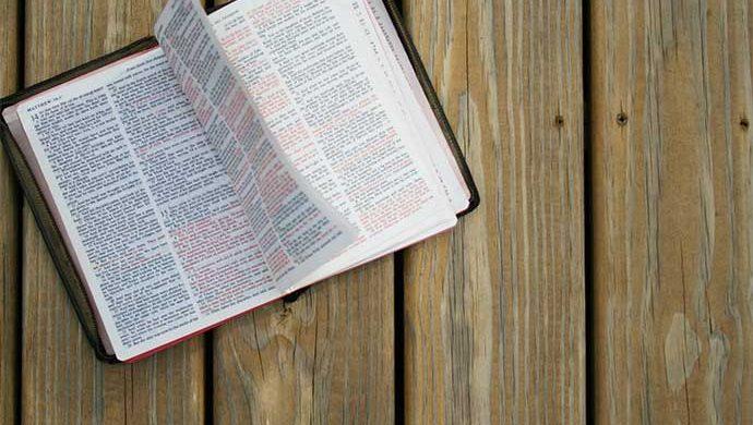 Lea la Biblia en 1 año – 301° día