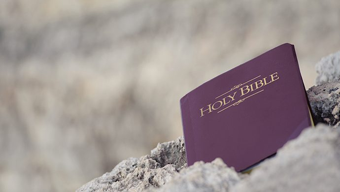 Lea la Biblia en 1 año – 306° día