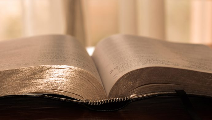 Lea la Biblia en 1 año – 309° día