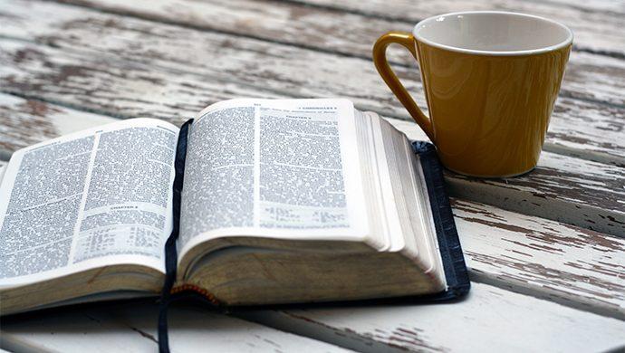 Lea la Biblia en 1 año – 365° día
