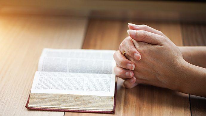 Lea la Biblia en 1 año – 351° día