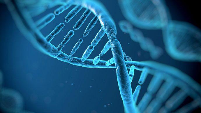 EL ADN DE DIOS