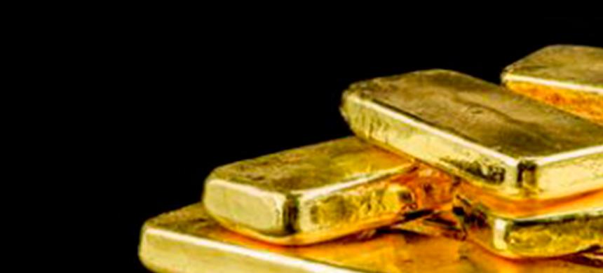 Búsqueda del oro