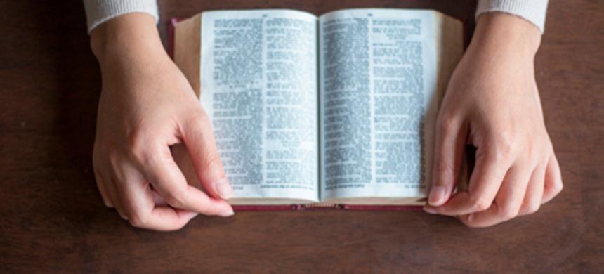 Disciplina y fidelidad
