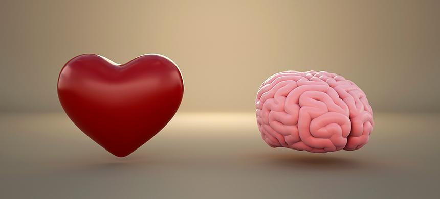 ¿Quién lo guía: mente o corazón?