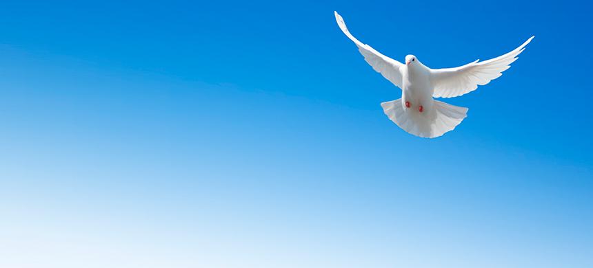 3 cualidades de quien tiene el Espíritu Santo