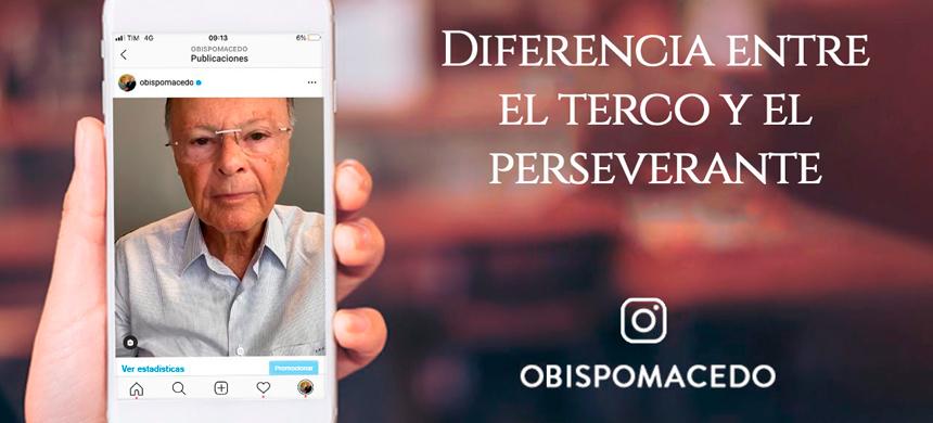 Diferencia entre el terco y el perseverante
