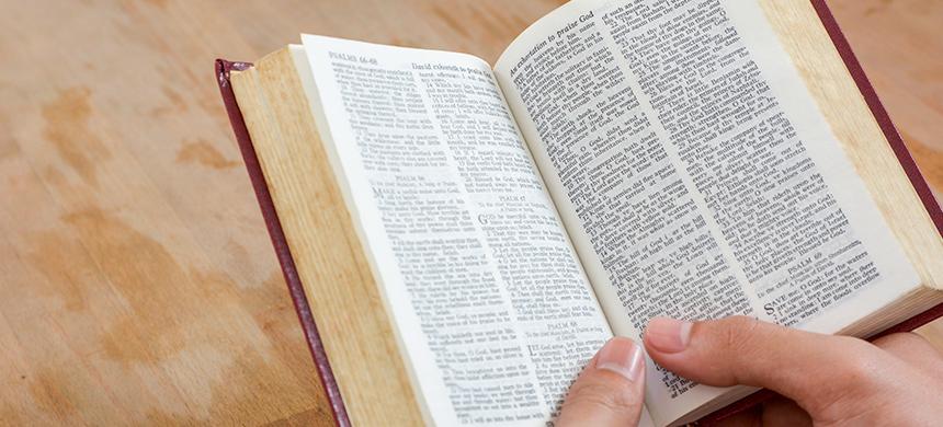 La búsqueda de Biblias aumenta en medio del coronavirus