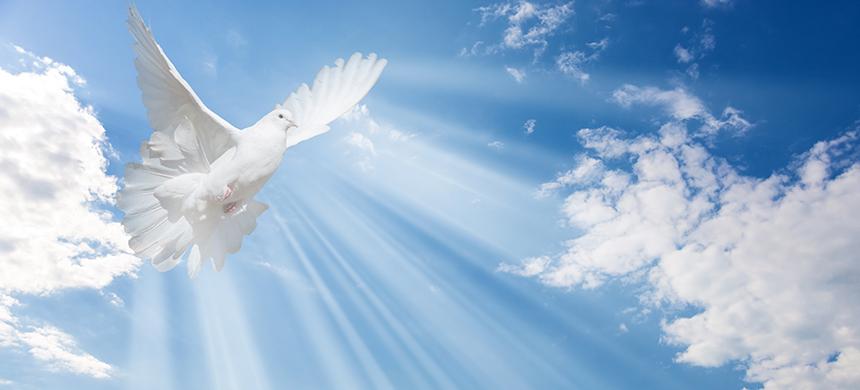 3 versículos que hablan sobre la actuación del Espíritu Santo