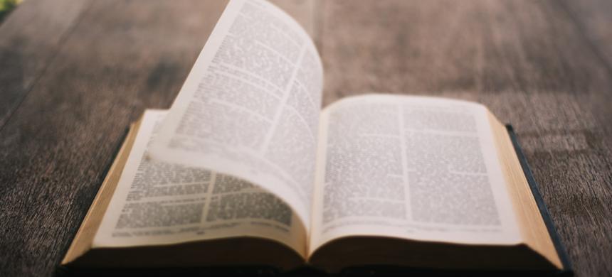 ¿Cuál es su reacción al escuchar la Palabra de Dios?