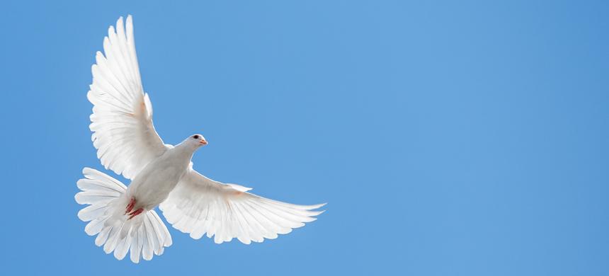 El Espíritu Santo no es una emoción
