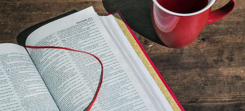 Alimento espiritual con valor nutritivo