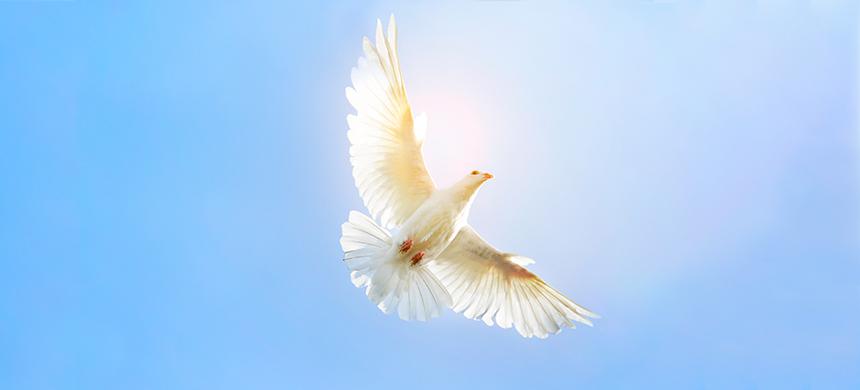 ¿Cómo recibir el Espíritu Santo?