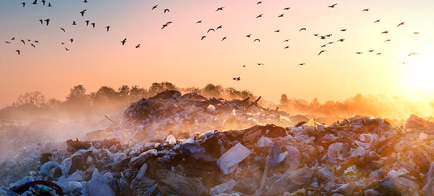 ¿Cuál es la peor fuente de contaminación?